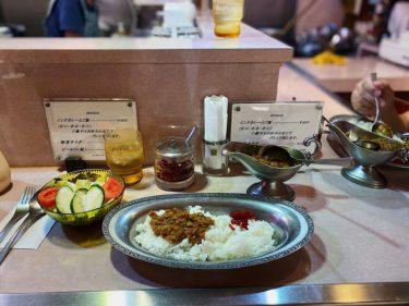 名古屋駅ミヤコ地下街「タンドゥール」のインドカレー